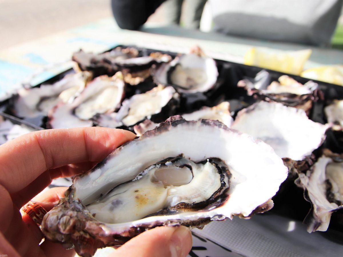 best oysters near me
